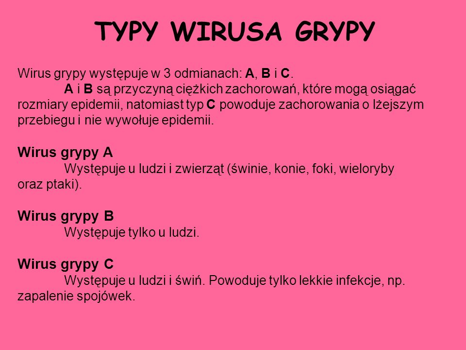 TYPY WIRUSA GRYPY Wirus grypy A Wirus grypy B Wirus grypy C