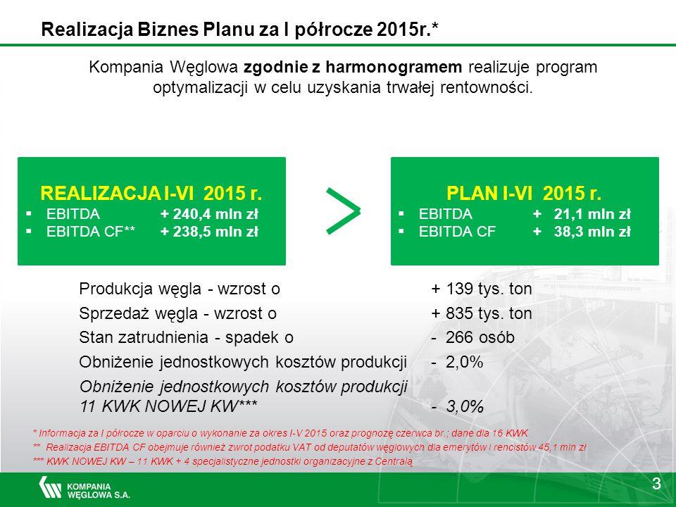 Realizacja Biznes Planu za I półrocze 2015r.*