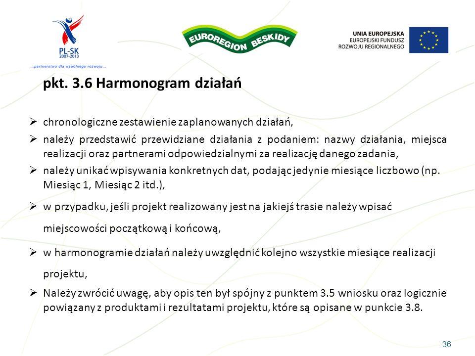 pkt. 3.6 Harmonogram działań