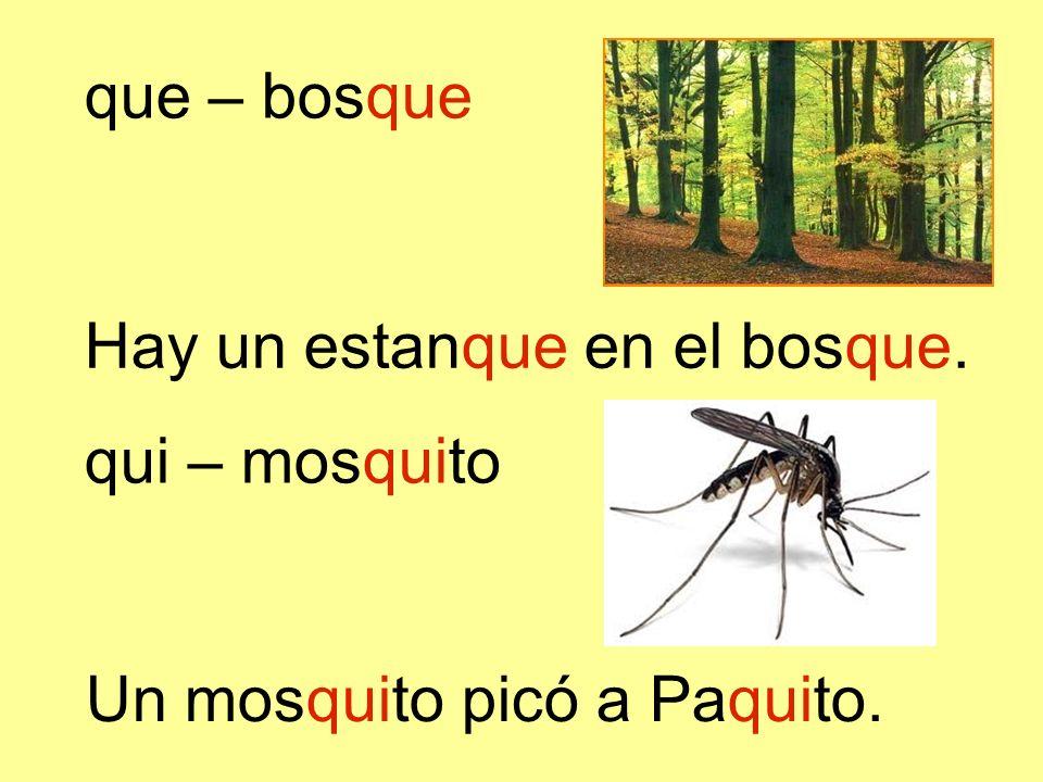 que – bosque Hay un estanque en el bosque. qui – mosquito Un mosquito picó a Paquito.