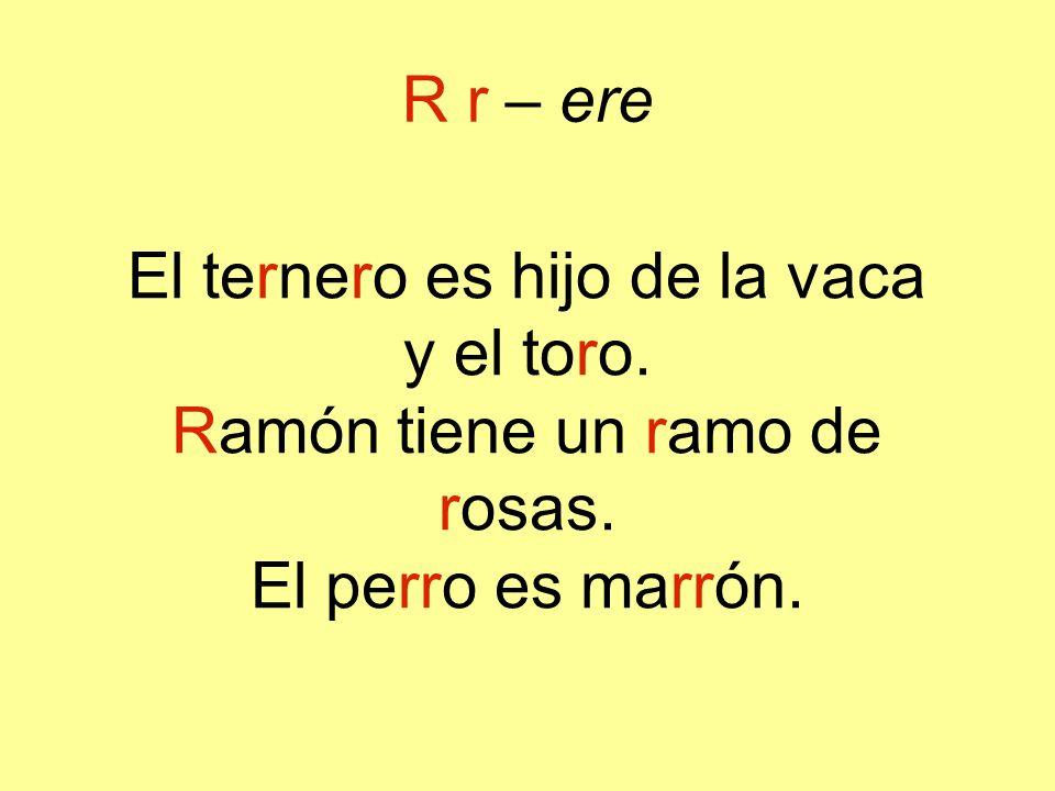 El ternero es hijo de la vaca y el toro. Ramón tiene un ramo de rosas.