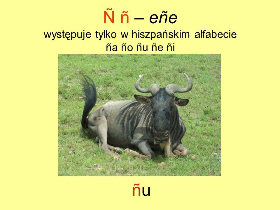 Ñ ñ – eñe występuje tylko w hiszpańskim alfabecie ña ño ñu ñe ñi