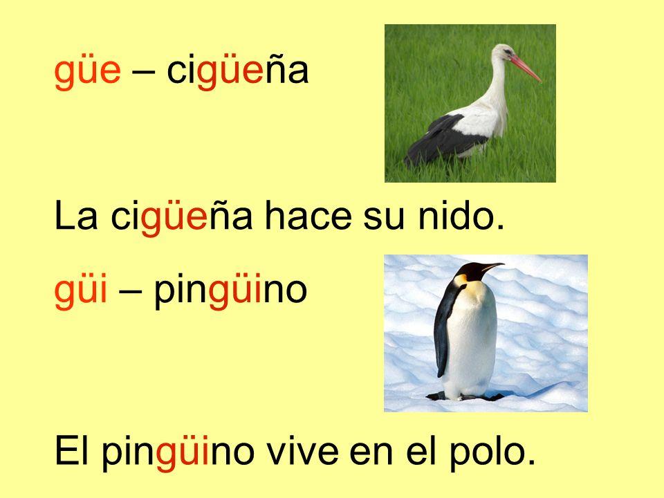 güe – cigüeña La cigüeña hace su nido. güi – pingüino El pingüino vive en el polo.