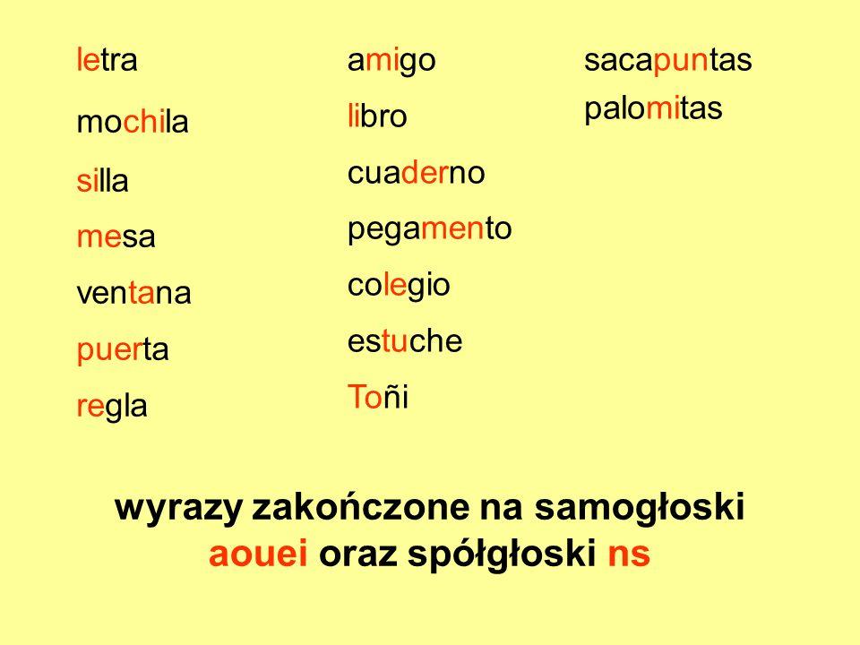 wyrazy zakończone na samogłoski aouei oraz spółgłoski ns