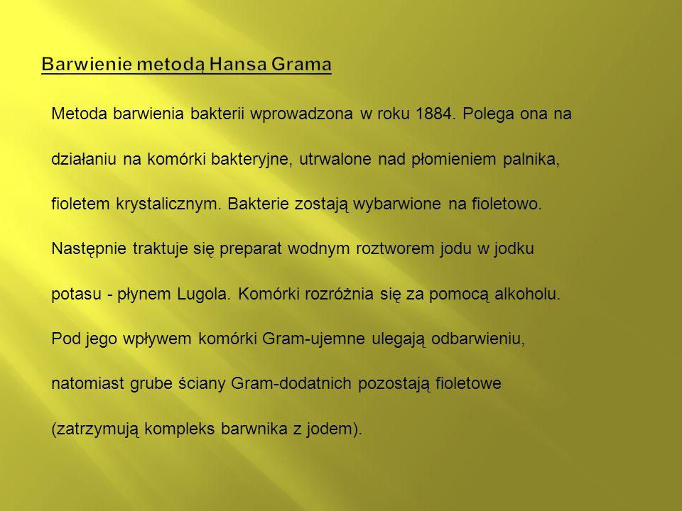 Barwienie metodą Hansa Grama