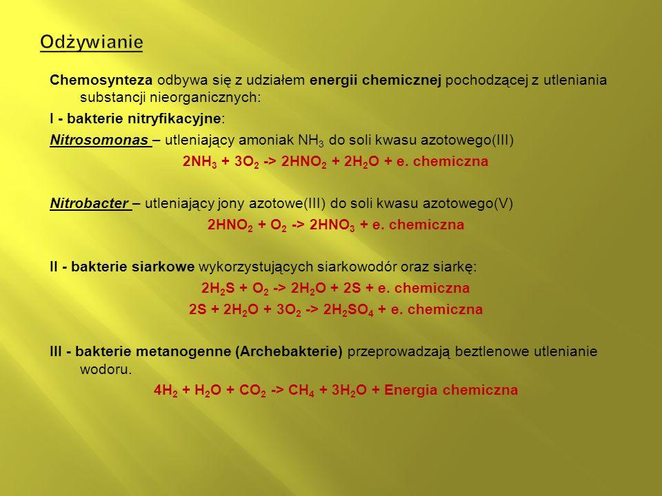 Odżywianie Chemosynteza odbywa się z udziałem energii chemicznej pochodzącej z utleniania substancji nieorganicznych: