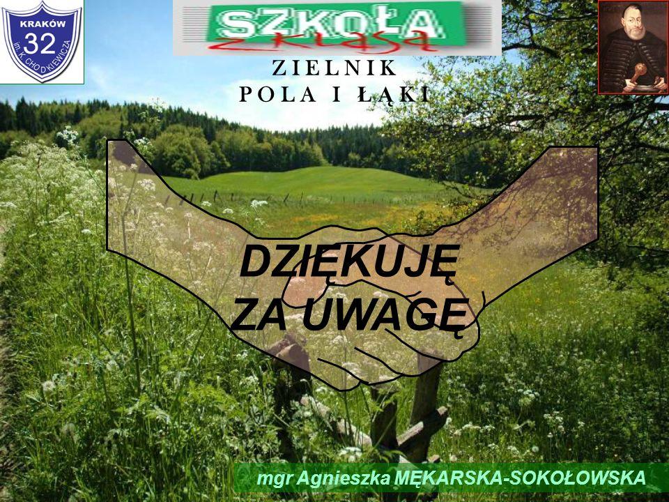 mgr Agnieszka MĘKARSKA-SOKOŁOWSKA