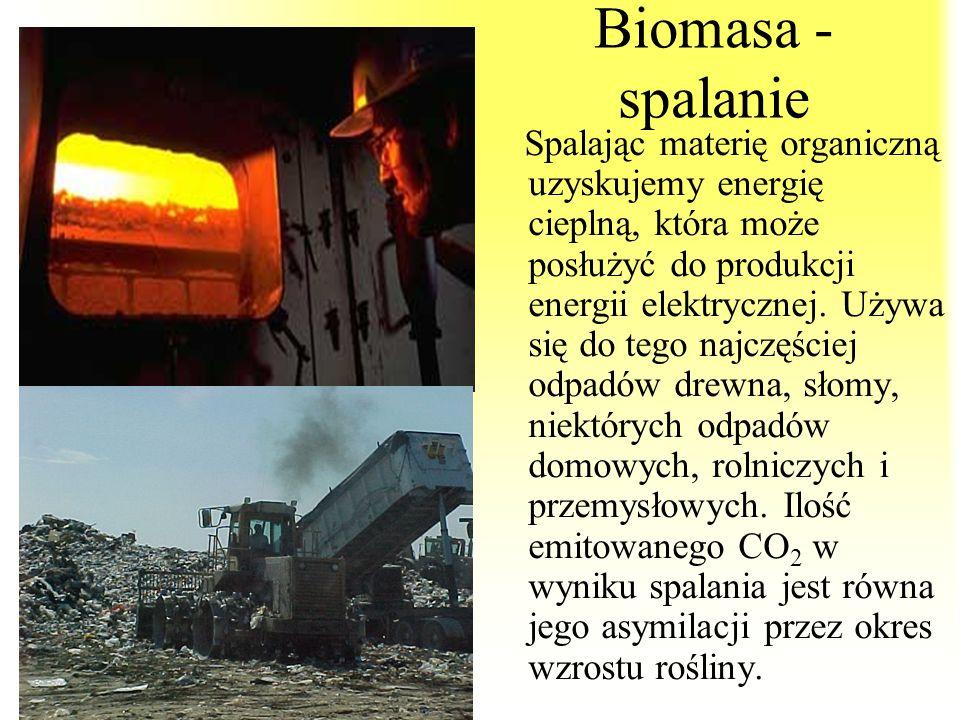 Biomasa - spalanie