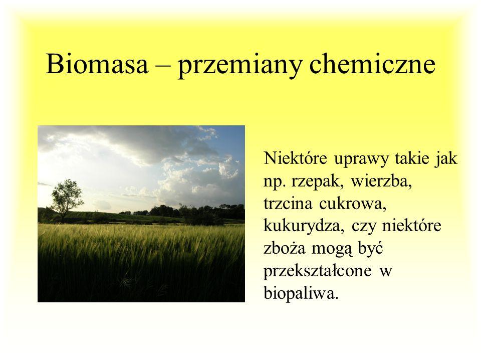 Biomasa – przemiany chemiczne