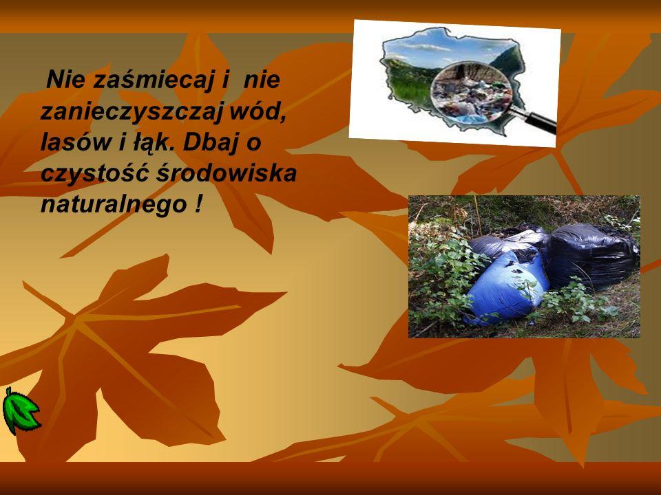 Nie zaśmiecaj i nie zanieczyszczaj wód, lasów i łąk