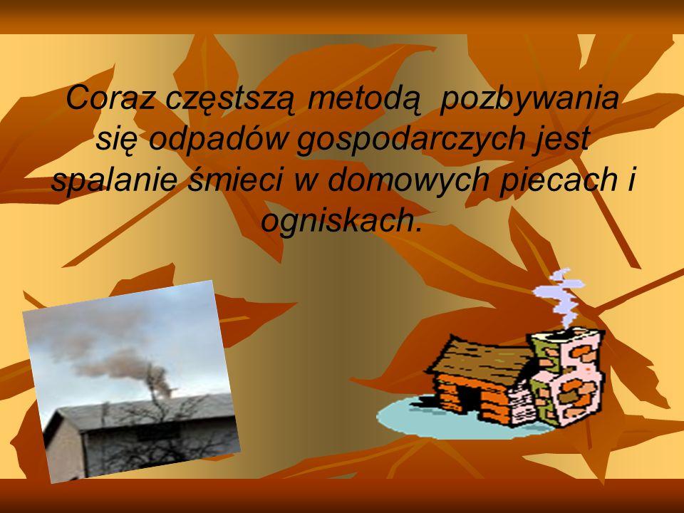 Coraz częstszą metodą pozbywania się odpadów gospodarczych jest spalanie śmieci w domowych piecach i ogniskach.