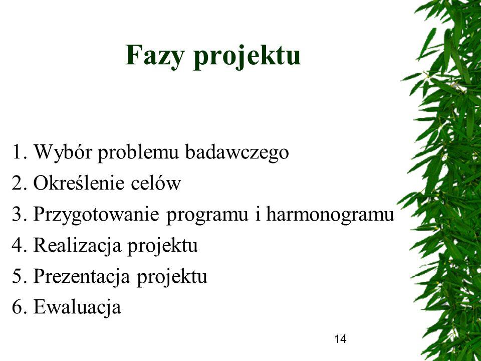 Fazy projektu 1. Wybór problemu badawczego 2. Określenie celów