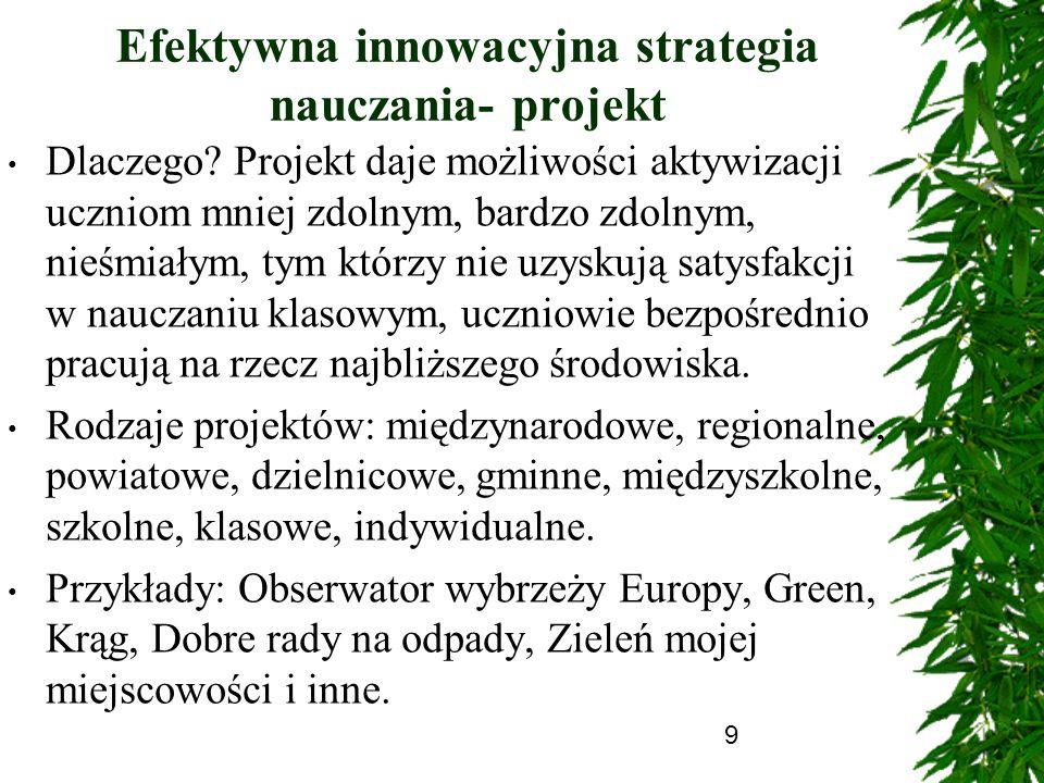 Efektywna innowacyjna strategia nauczania- projekt