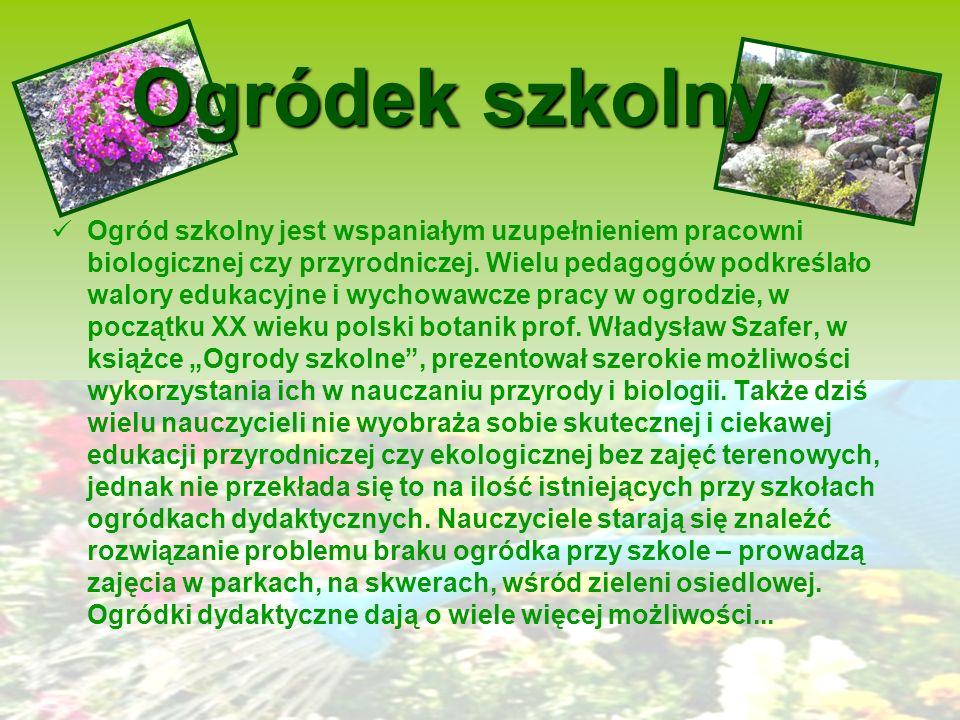 Ogródek szkolny