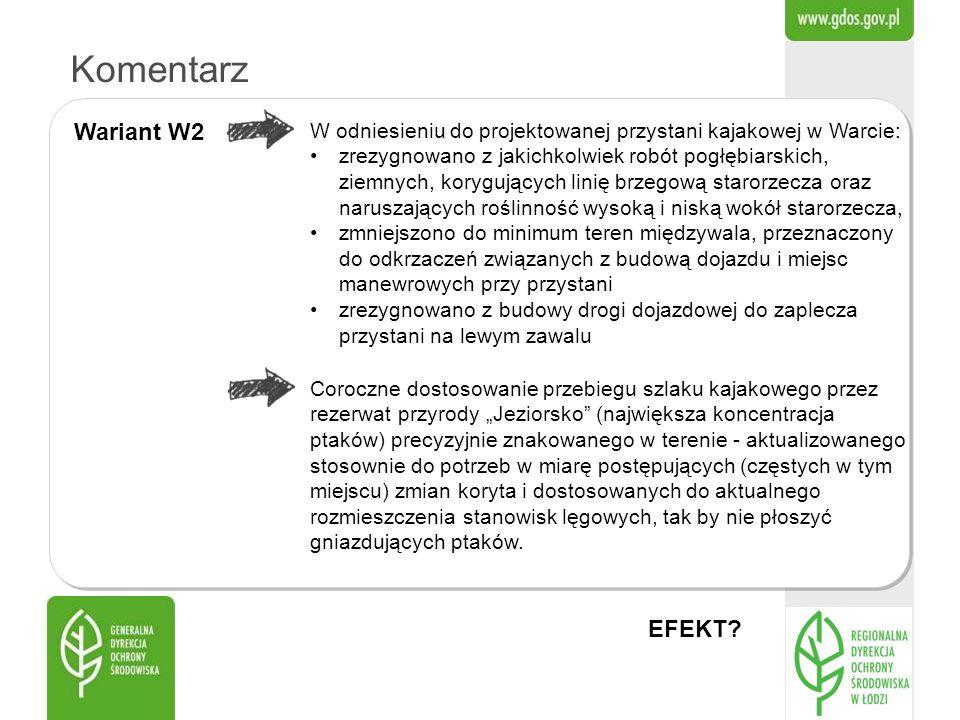 Komentarz Wariant W2 EFEKT