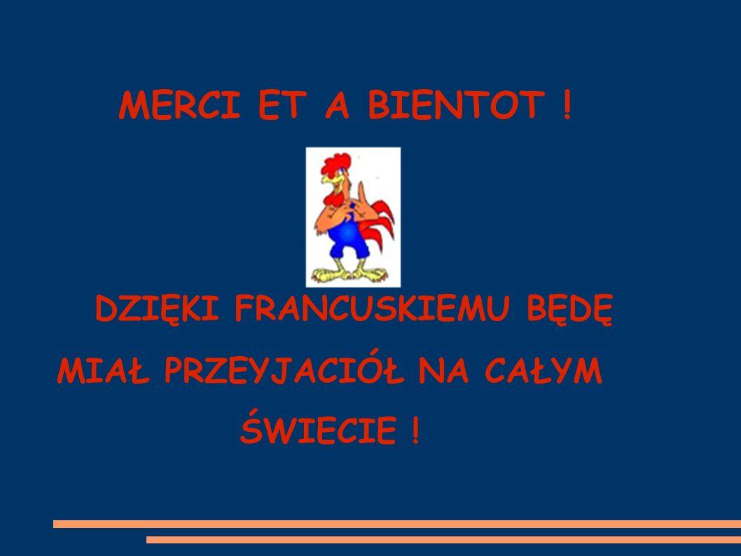 MERCI ET A BIENTOT ! DZIĘKI FRANCUSKIEMU BĘDĘ MIAŁ PRZEYJACIÓŁ NA CAŁYM ŚWIECIE !