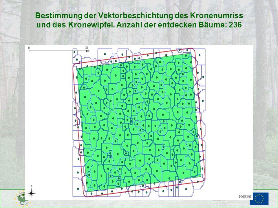 Bestimmung der Vektorbeschichtung des Kronenumriss und des Kronewipfel
