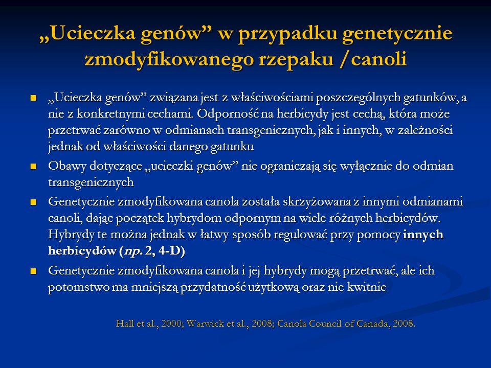 """""""Ucieczka genów w przypadku genetycznie zmodyfikowanego rzepaku /canoli"""