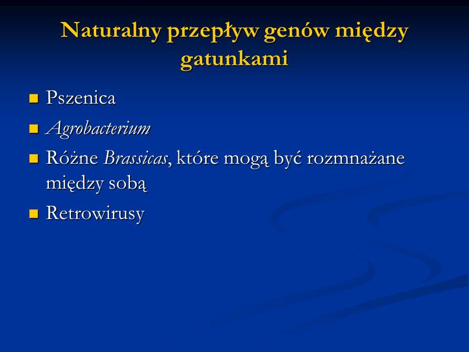 Naturalny przepływ genów między gatunkami