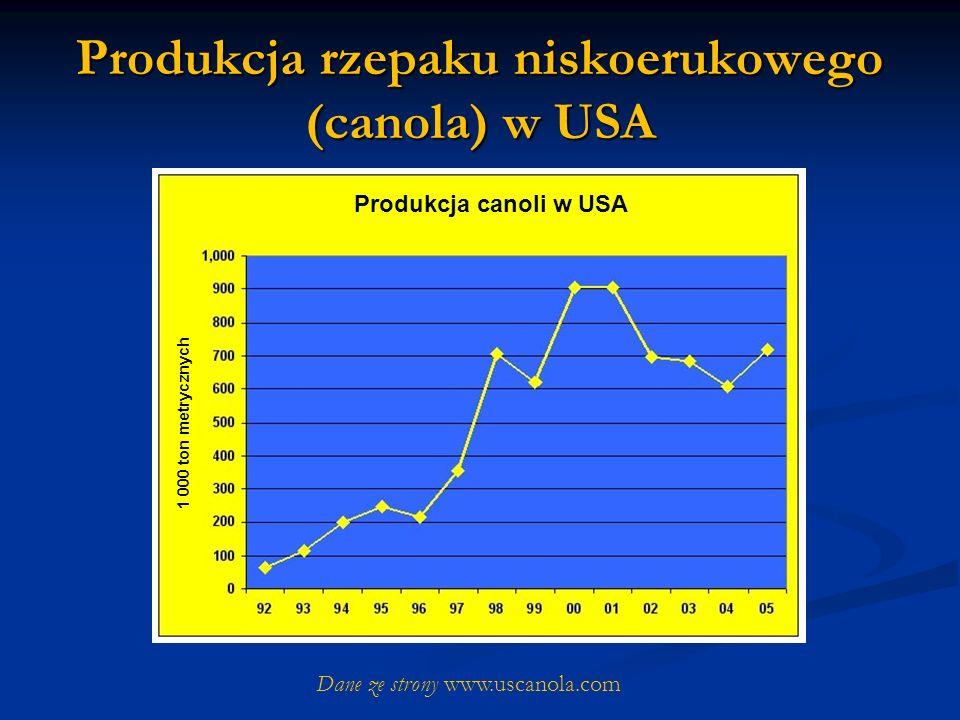 Produkcja rzepaku niskoerukowego (canola) w USA