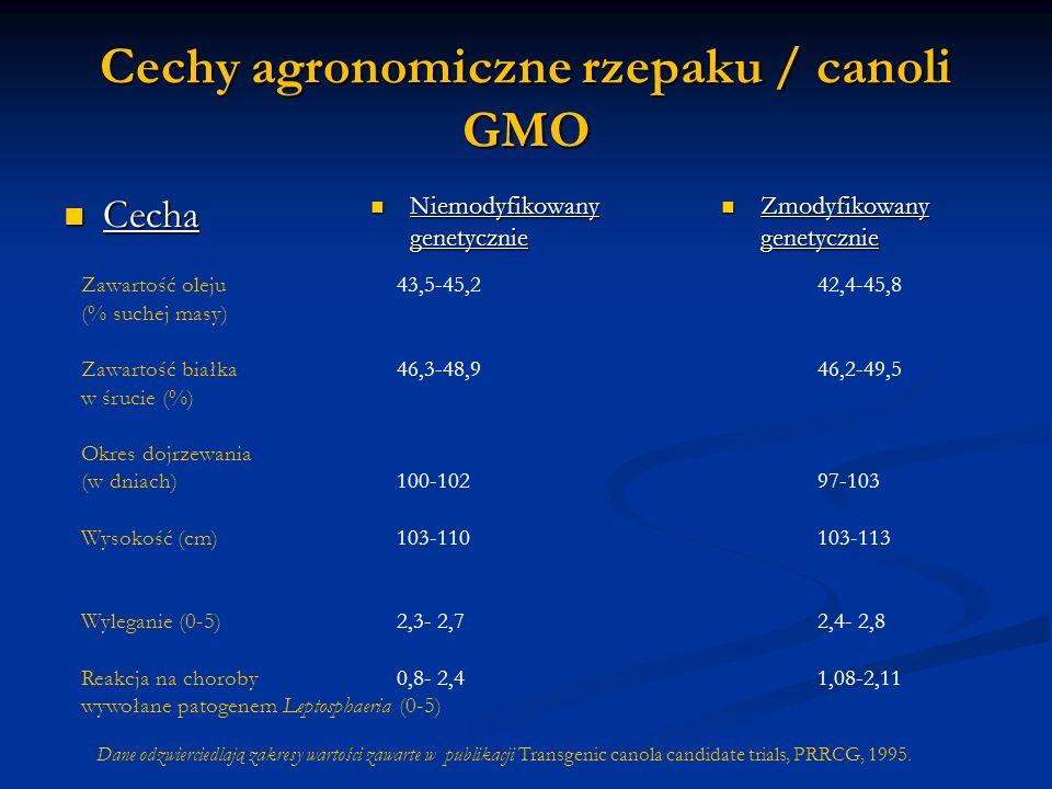 Cechy agronomiczne rzepaku / canoli GMO