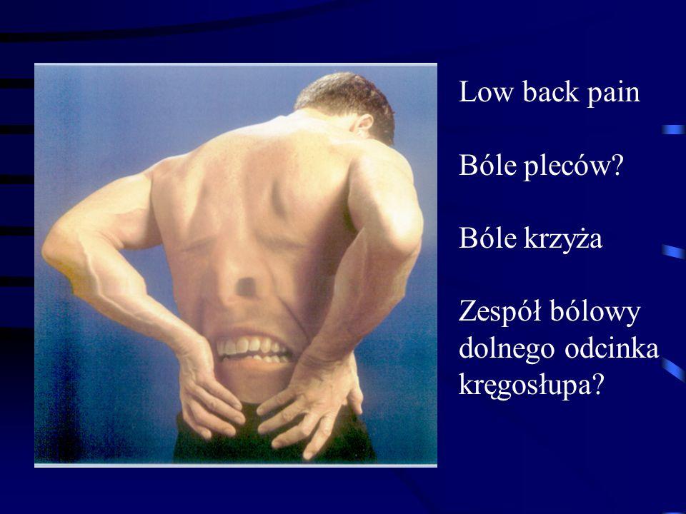 Low back pain Bóle pleców Bóle krzyża Zespół bólowy dolnego odcinka kręgosłupa