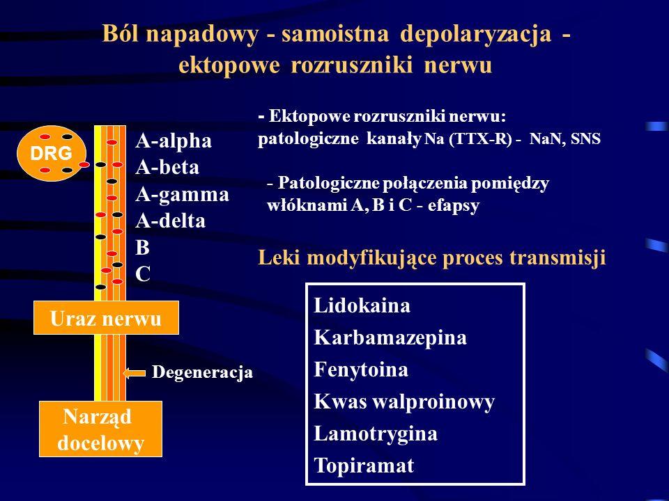 Ból napadowy - samoistna depolaryzacja - ektopowe rozruszniki nerwu
