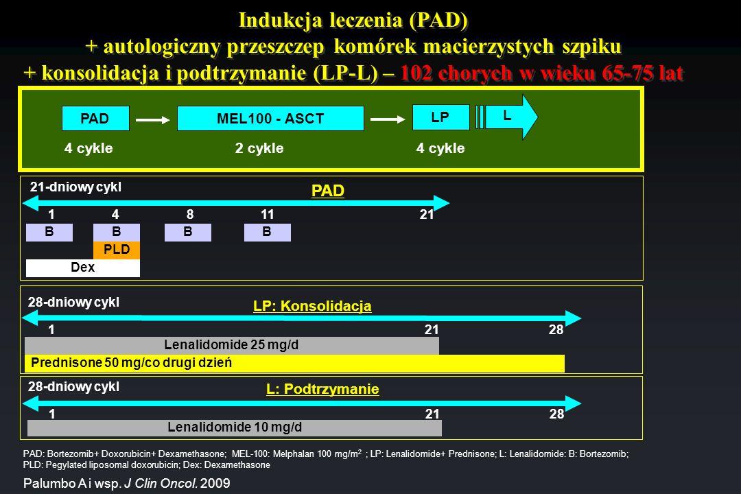 Indukcja leczenia (PAD) + autologiczny przeszczep komórek macierzystych szpiku + konsolidacja i podtrzymanie (LP-L) – 102 chorych w wieku 65-75 lat