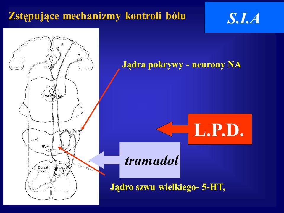 L.P.D. S.I.A tramadol Zstępujące mechanizmy kontroli bólu