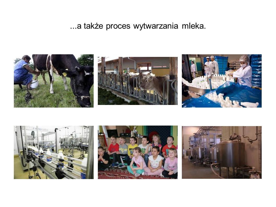 ...a także proces wytwarzania mleka.