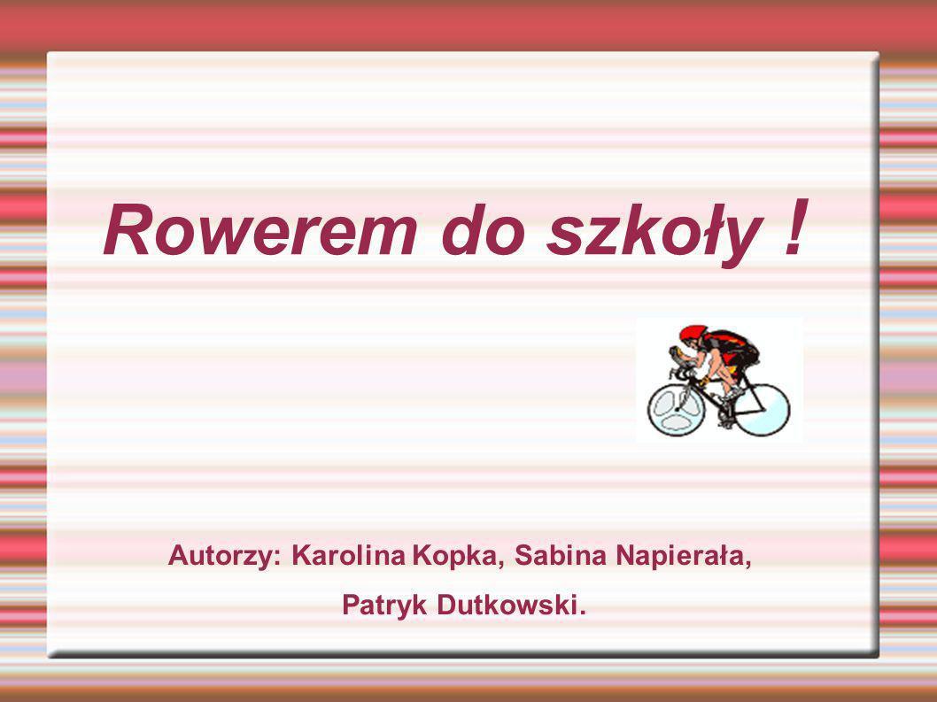 Autorzy: Karolina Kopka, Sabina Napierała, Patryk Dutkowski.