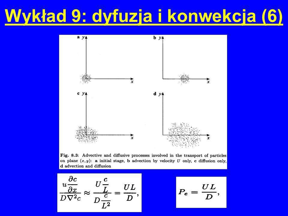 Wykład 9: dyfuzja i konwekcja (6)