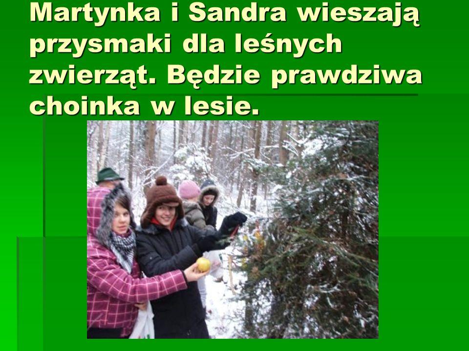 Martynka i Sandra wieszają przysmaki dla leśnych zwierząt