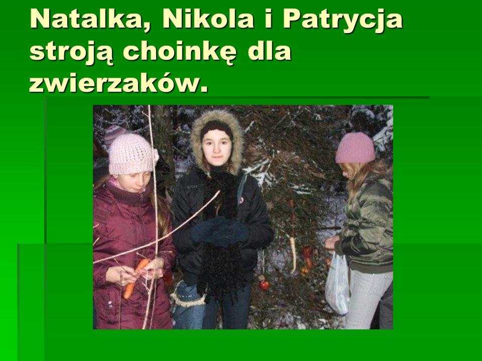 Natalka, Nikola i Patrycja stroją choinkę dla zwierzaków.