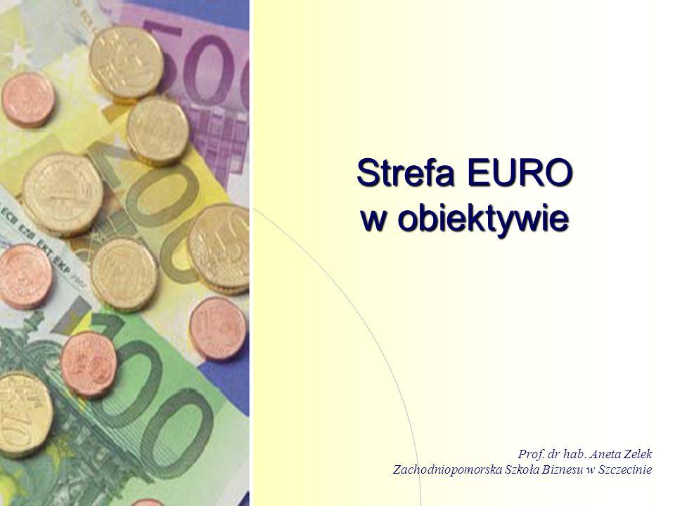 Strefa EURO w obiektywie