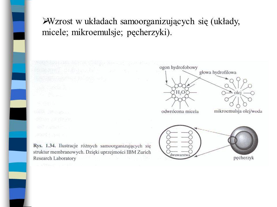 Wzrost w układach samoorganizujących się (układy, micele; mikroemulsje; pęcherzyki).