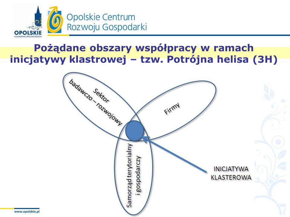 Pożądane obszary współpracy w ramach inicjatywy klastrowej – tzw