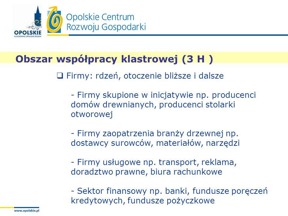 Obszar współpracy klastrowej (3 H )