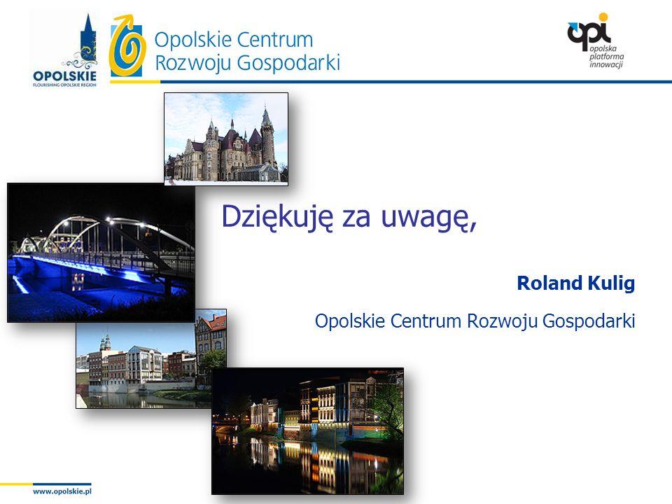 Roland Kulig Opolskie Centrum Rozwoju Gospodarki