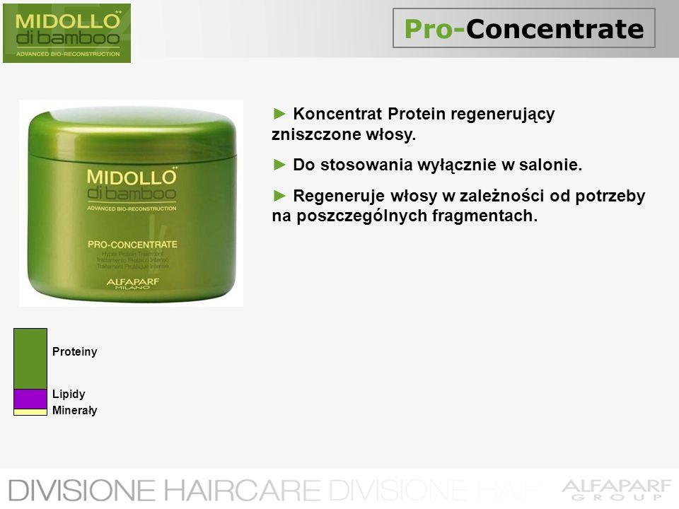 Pro-Concentrate ► Koncentrat Protein regenerujący zniszczone włosy.