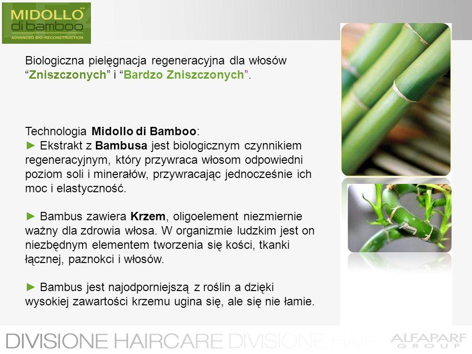 Biologiczna pielęgnacja regeneracyjna dla włosów Zniszczonych i Bardzo Zniszczonych .