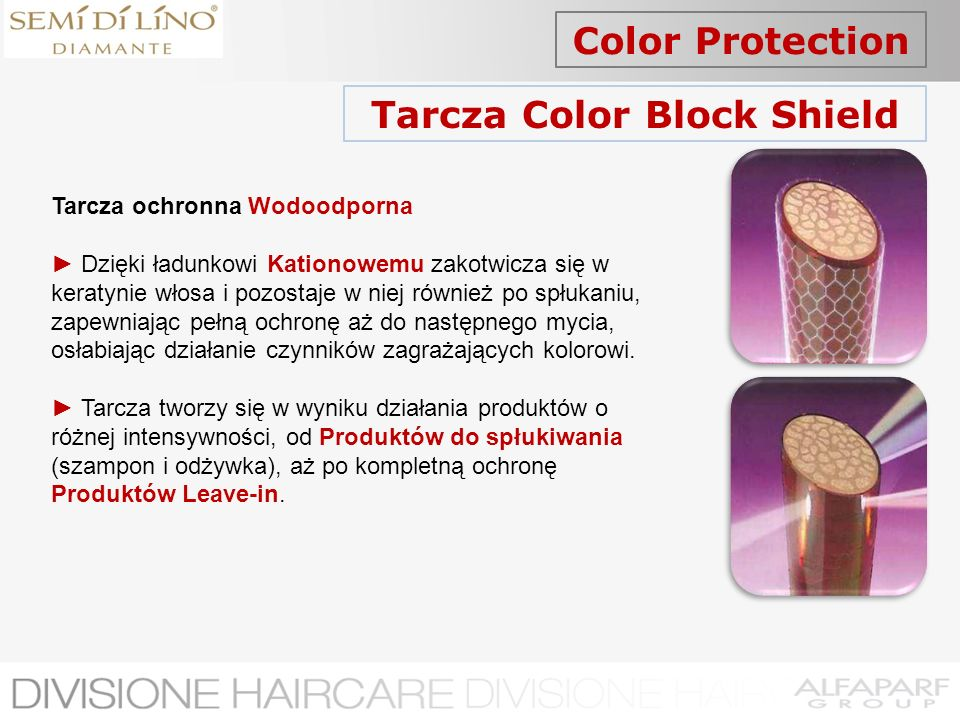 Tarcza Color Block Shield