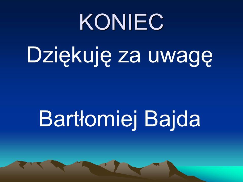 KONIEC Dziękuję za uwagę Bartłomiej Bajda