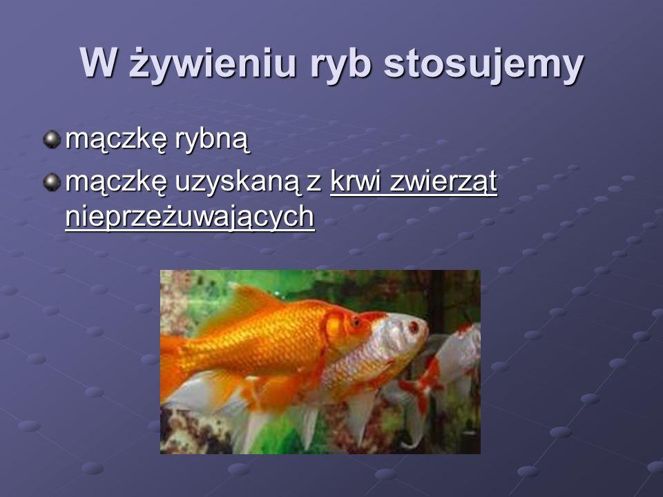 W żywieniu ryb stosujemy