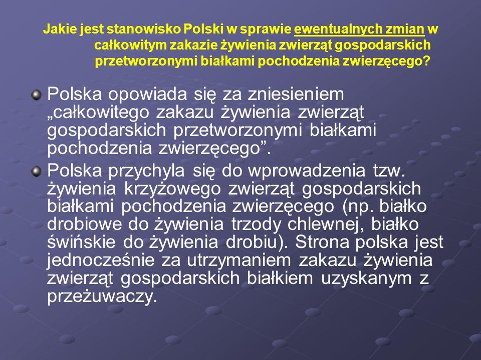 Jakie jest stanowisko Polski w sprawie ewentualnych zmian w całkowitym zakazie żywienia zwierząt gospodarskich przetworzonymi białkami pochodzenia zwierzęcego