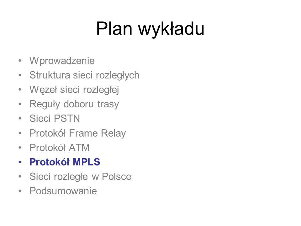 Plan wykładu Wprowadzenie Struktura sieci rozległych