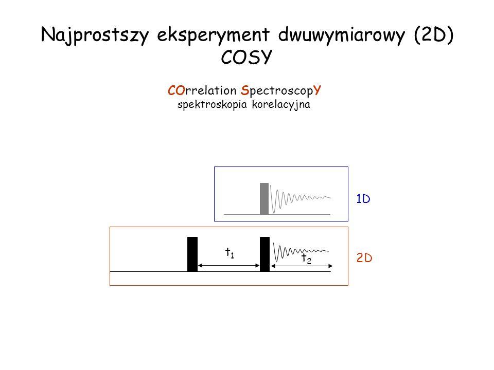 Najprostszy eksperyment dwuwymiarowy (2D) COSY