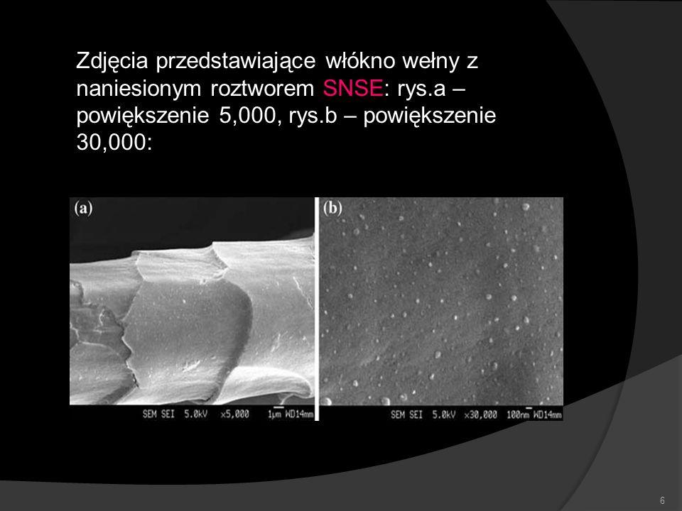 Zdjęcia przedstawiające włókno wełny z naniesionym roztworem SNSE: rys