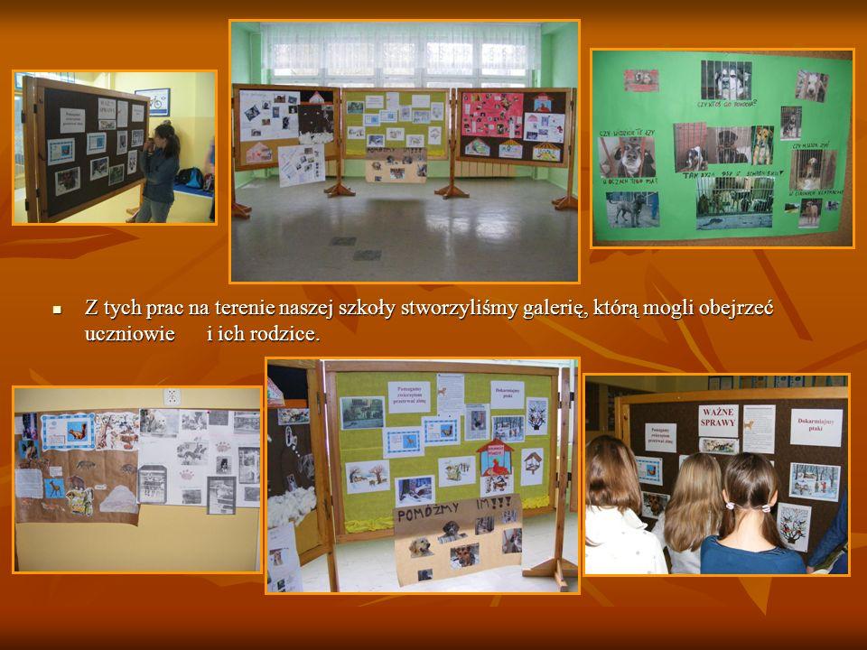 Z tych prac na terenie naszej szkoły stworzyliśmy galerię, którą mogli obejrzeć uczniowie i ich rodzice.