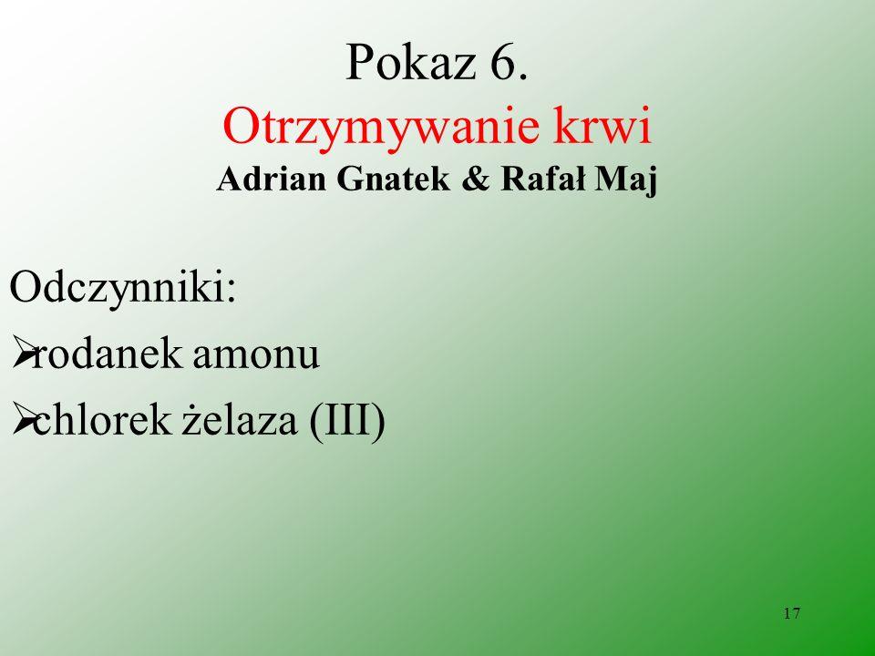 Pokaz 6. Otrzymywanie krwi Adrian Gnatek & Rafał Maj